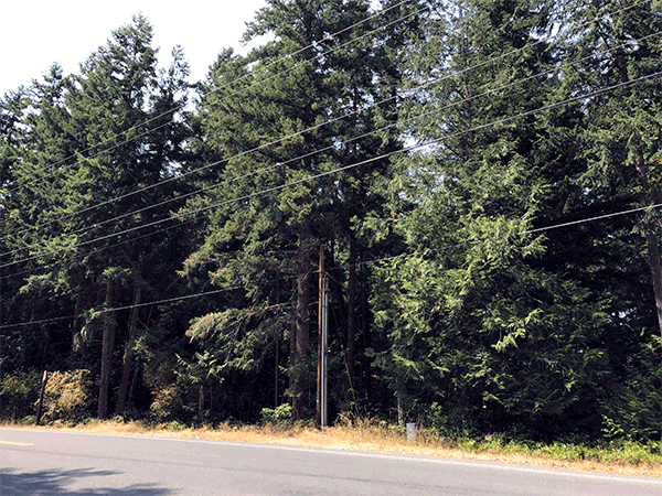 Image of 2681 Diamond Point Road, Sequim