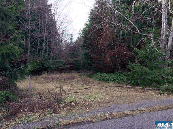 Image of Lot 12 Timber, Sequim