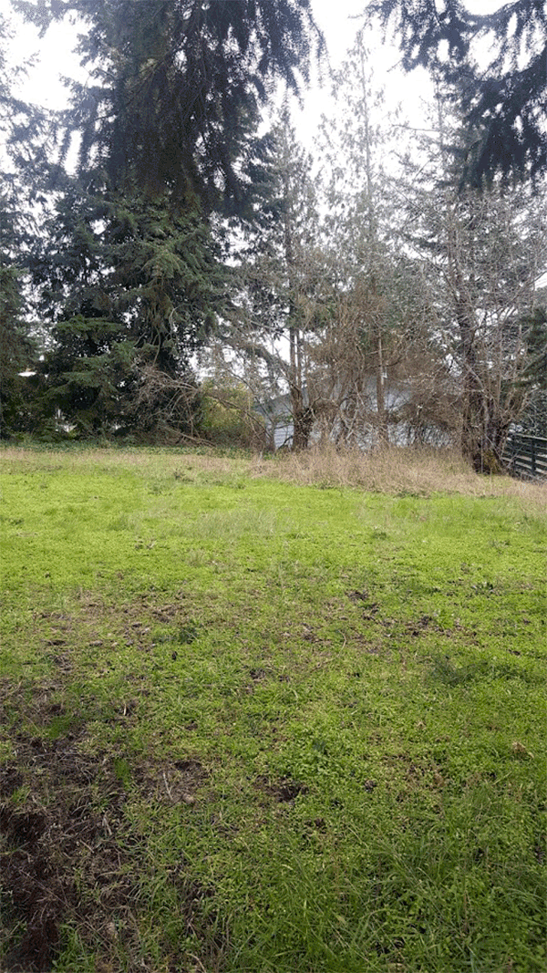 Image of 9999 Hogans Vista, Sequim