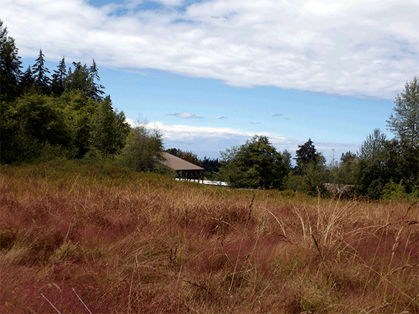 Image of Lot 7 Equus Ln Lot 7  Erdman Acres Survey., Sequim