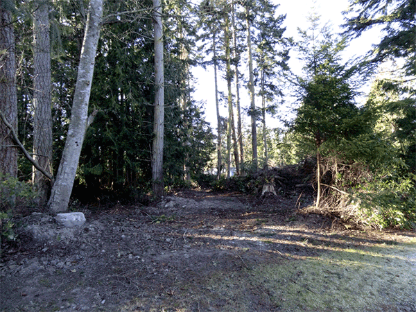 Image of Lot 29 Madrona Way, Sequim